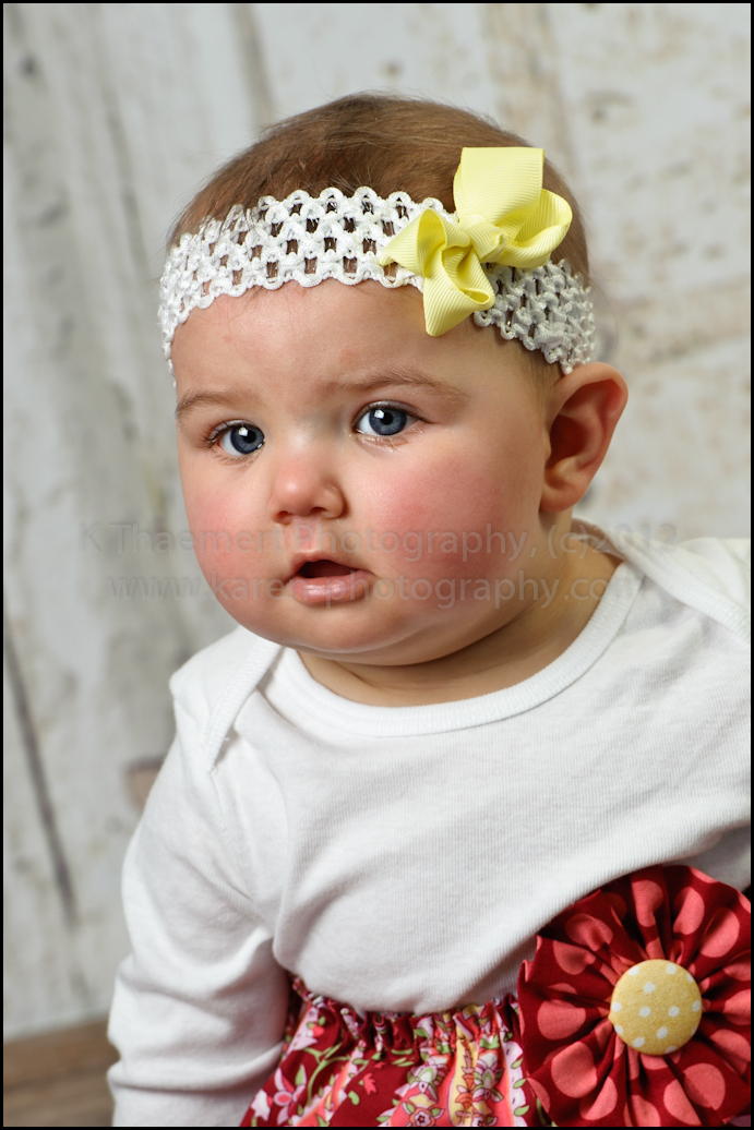 6 month girl portrait by St Charles Baby Photographer