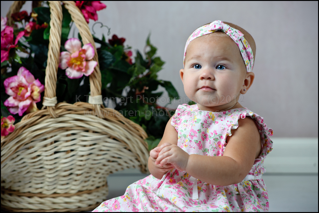 9 Month Portrait of little girl by St Charles Baby Photographer