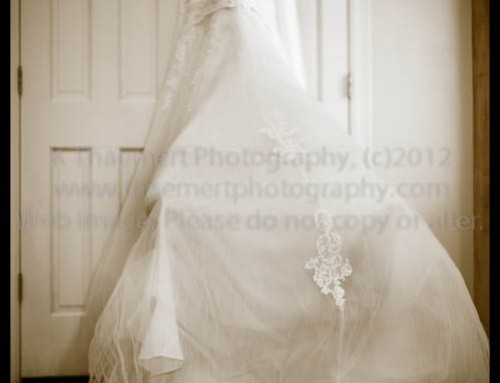St Louis Wedding Photographer – beautiful Dress