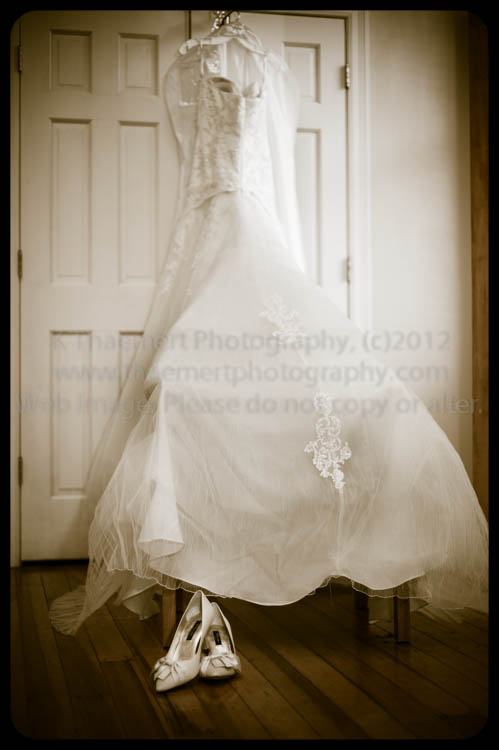St Charles Wedding Photographer wedding gown image