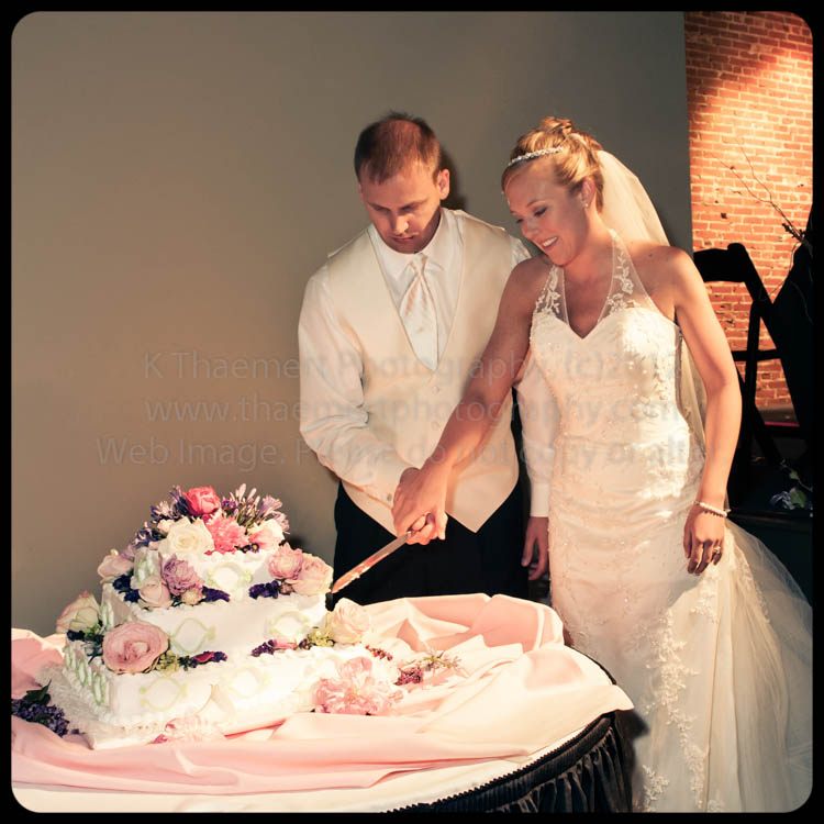 Bride and groom cutting the cake by St Charles Wedding Photographer