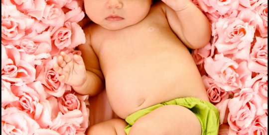 St Charles Baby Photographer 3 Month Baby Girl in Roses