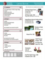 Limited Edition Mini Session Prices